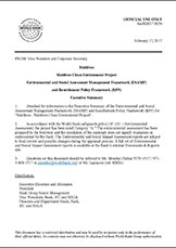 20180102-pub-esamf-exec-summary-eng