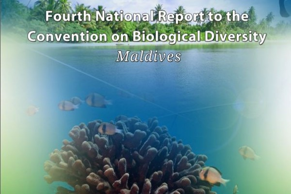National biodiversity strategy and action plan nigeria