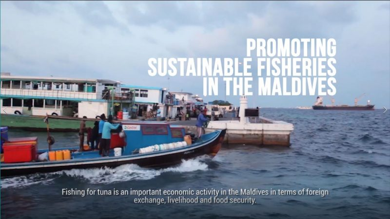 20170809-vid-Promoting_Sustainable_Fisheries_in_the_Maldives